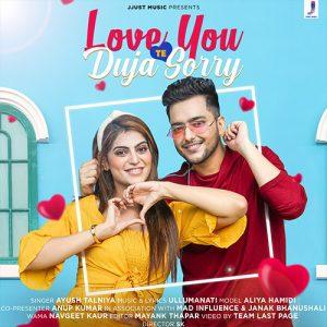 love-you-te-duja-sorry